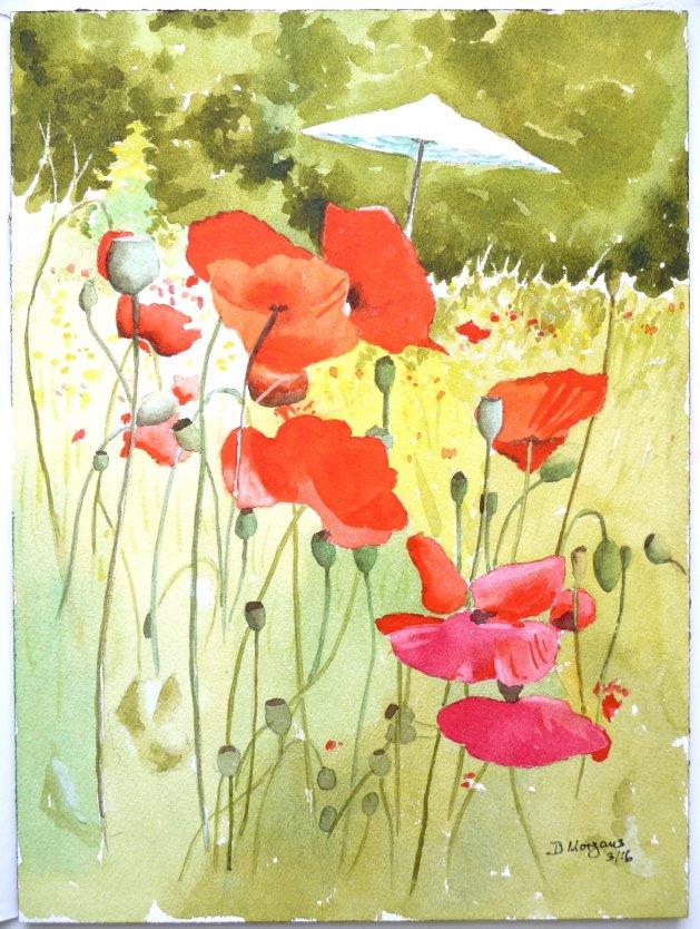 Poppies. Original art by David Morgans