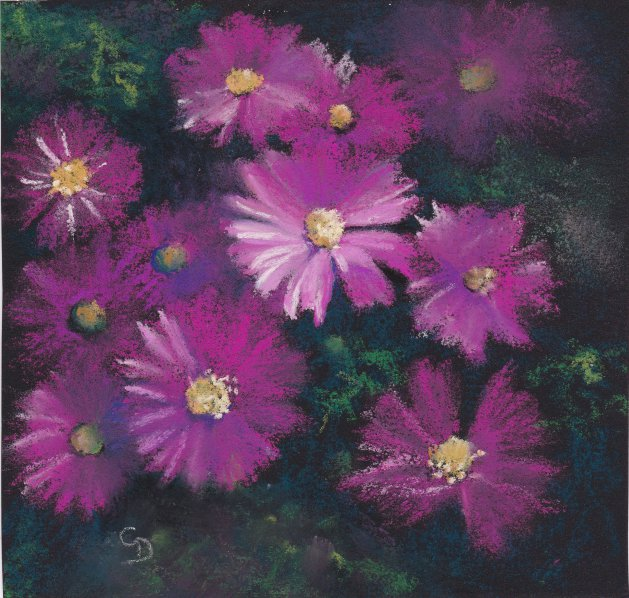 Little Pink Asters. Original art by Christine Derrick