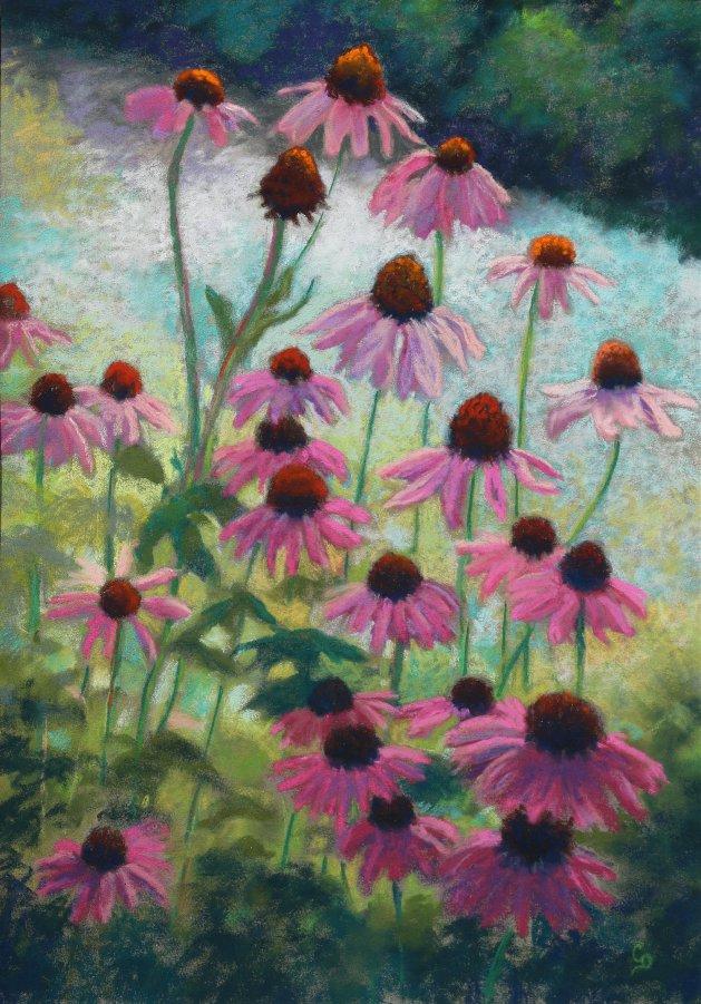 Echinacea. Original art by Christine Derrick
